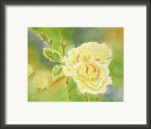 Sunshine And Yellow Roses Framed Print By Kathryn Duncan