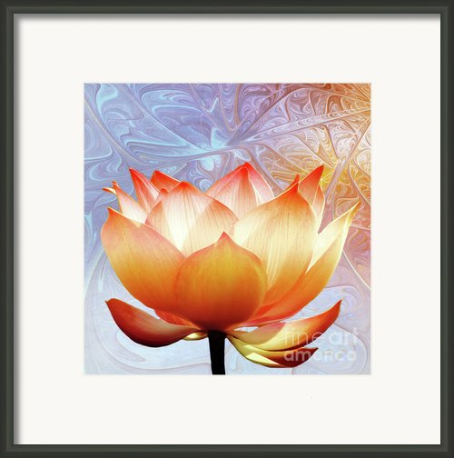 Sunshine Lotus Framed Print By Photodream Art