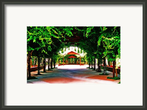 Surreal Garden Framed Print By Charles Benavidez