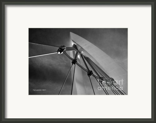 Suspension Framed Print By Fred Lassmann