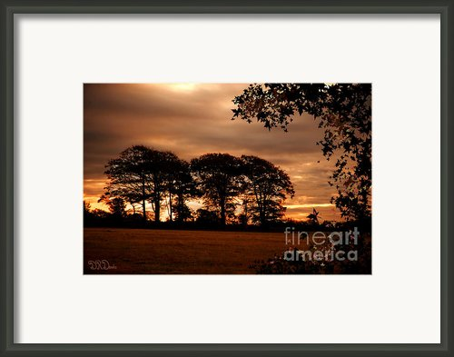 Sussex Sunrise Framed Print By Donald Davis