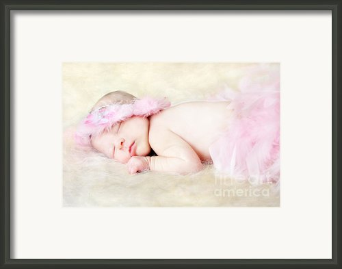 Sweet Baby Girl Framed Print By Darren Fisher