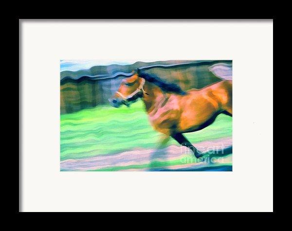 Swings Framed Print By Odon Czintos