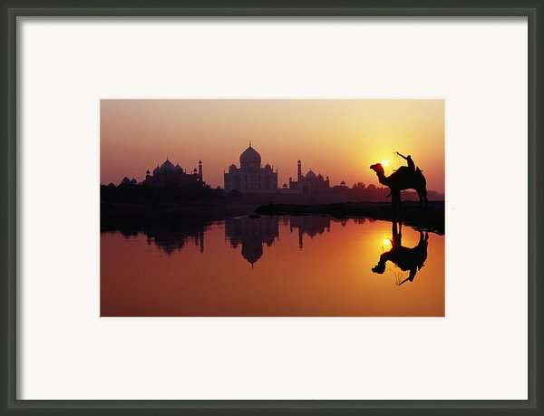 Taj Mahal & Silhouetted Camel & Reflection In Yamuna River At Sunset Framed Print By Richard I