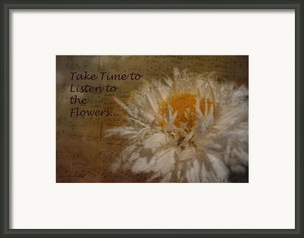 Take Time Framed Print By Cindy Wright