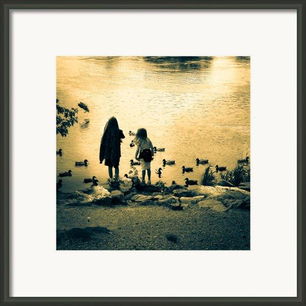 Talking To Ducks Framed Print By Bob Orsillo