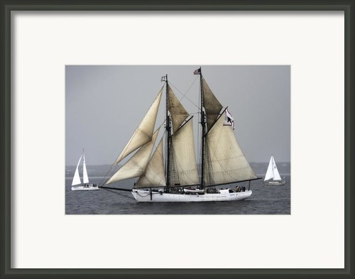 Tall Ship Framed Print By Dapixara Art