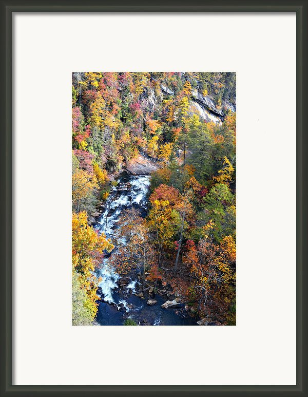 Tallulah River Gorge Framed Print By Susan Leggett