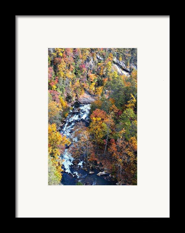 Tallulah River Gorge Framed Print By Susan Leggett