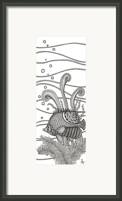 Tangle Fish Framed Print By Stephanie Troxell