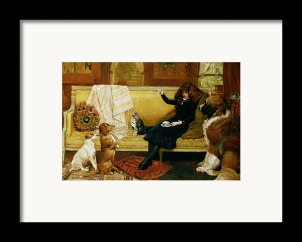 Teatime Treat Framed Print By John Charlton