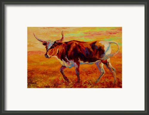 Texas Longhorn Framed Print By Marion Rose