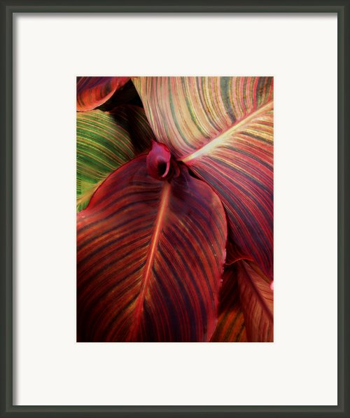 Texting In Line Form Framed Print By Sally Siko
