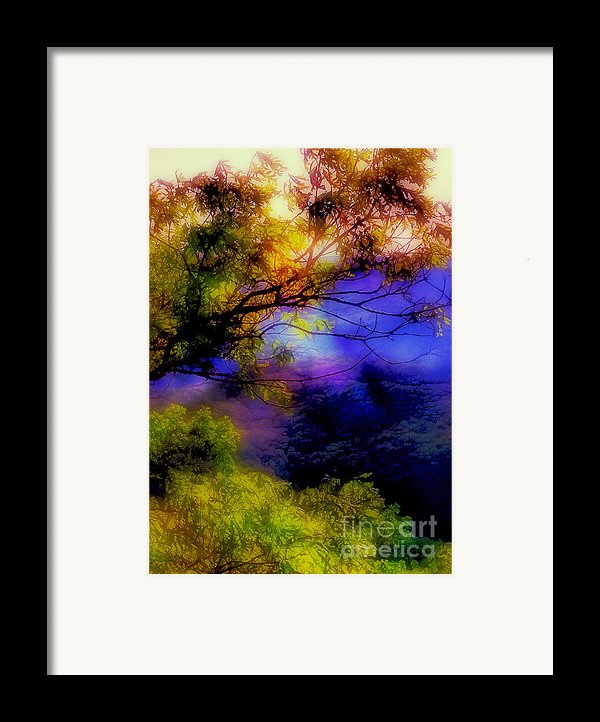 That Mountain Light Framed Print By Judi Bagwell