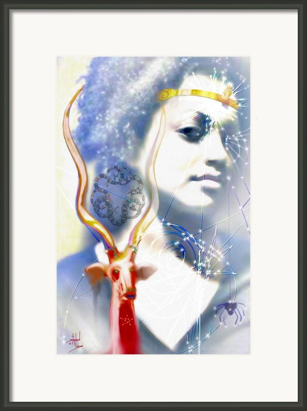 The African Witchweaver Framed Print By Stephen Lucas