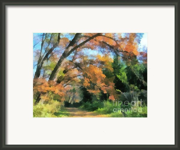 The Autumn Forest Framed Print By Odon Czintos