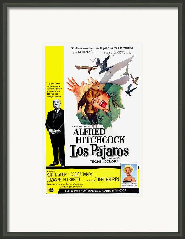 The Birds, Aka Los Pajaros, Alfred Framed Print By Everett