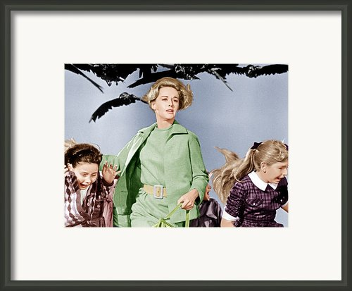 The Birds, Tippi Hedren Center, 1963 Framed Print By Everett
