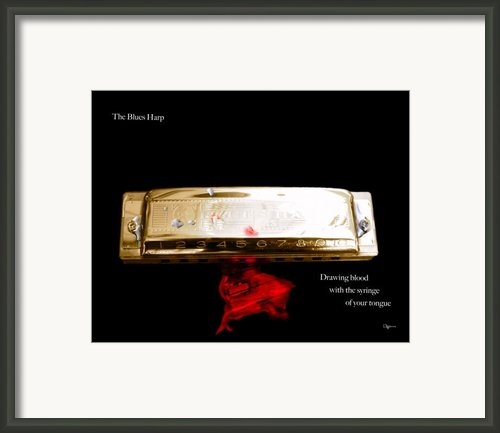 The Blues Harp Framed Print By Steven  Digman