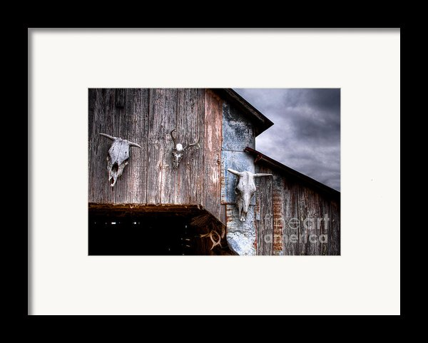 The Broad Side Of A... Framed Print By Pixel Perfect By Michael Moore