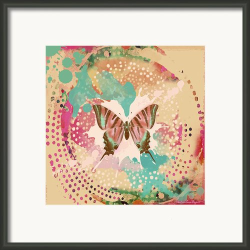 The Butterfly Experiment Framed Print By Christine Louise Bryant