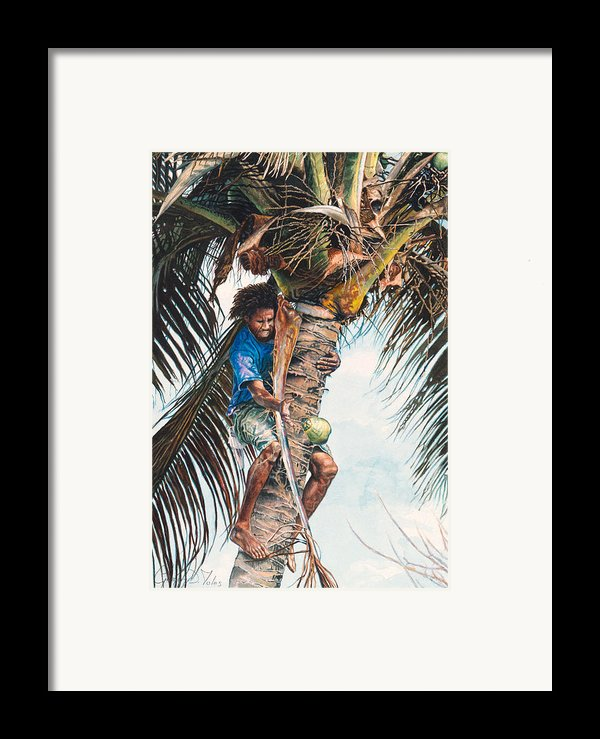The Coconut Tree Framed Print By Gregory Jules