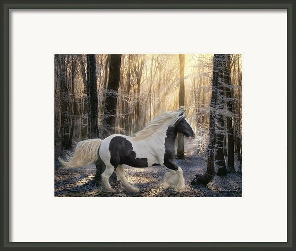 The Crystal Morning Framed Print By Terry Kirkland Cook