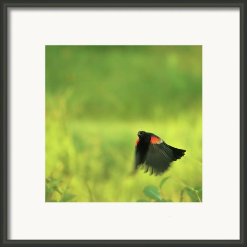 The Dancer Framed Print By Aimelle