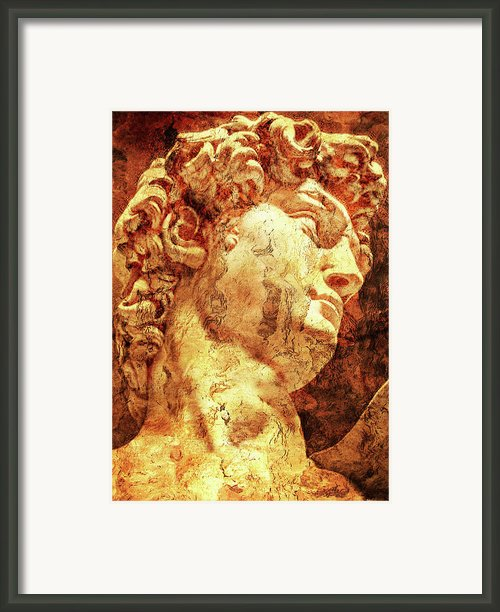 The David By Michelangelo Framed Print By Juan Jose Espinoza