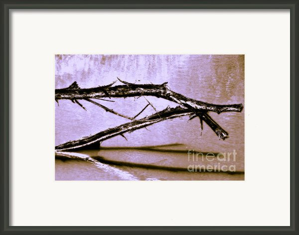 The Dragon In The Pond Framed Print By Judi Bagwell