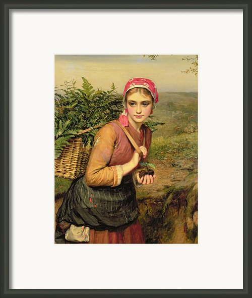 The Fern Gatherer Framed Print By Charles Sillem Lidderdale