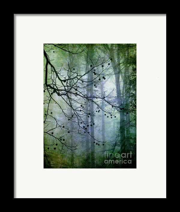 The Forest Cathedral Framed Print By Judi Bagwell