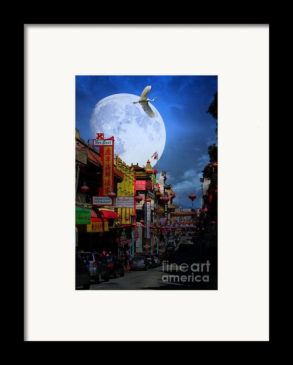 The Great White Egret Of Chinatown . 7d7172 Framed Print By Wingsdomain Art And Photography