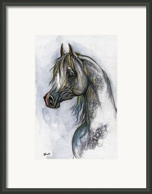 The Grey Arabian Horse 10 Framed Print By Angel  Tarantella