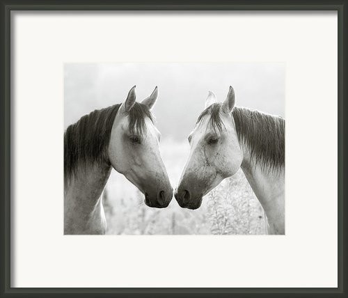 The Greys Framed Print By Ron  Mcginnis