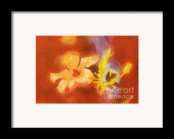The Iris Flower Framed Print By Odon Czintos