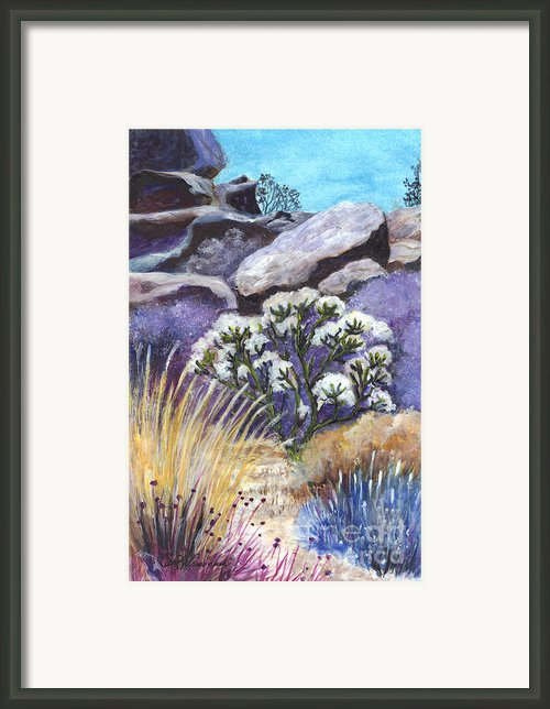 The Joshua Tree Framed Print By Carol Wisniewski