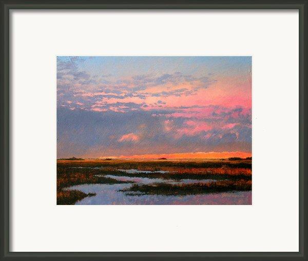 The Marsh  Framed Print By Gary Gowans