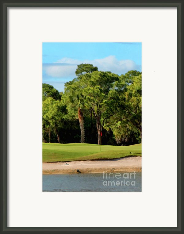 The Meadows Golf Club 12th Framed Print By Tom Prendergast