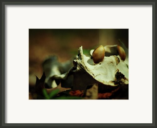 The Meek Shall Framed Print By Rebecca Sherman