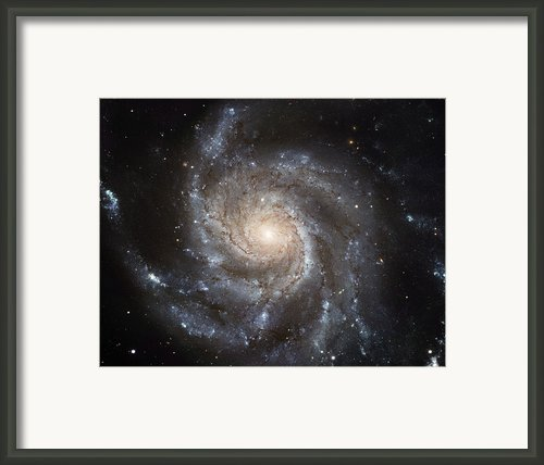 The Messier 101, Or Pinwheel, Galaxy Framed Print By