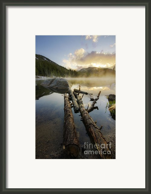 The Mist Framed Print By Tyler Porter