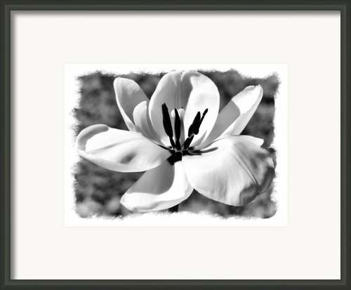 The Notecard Framed Print By Karen M Scovill