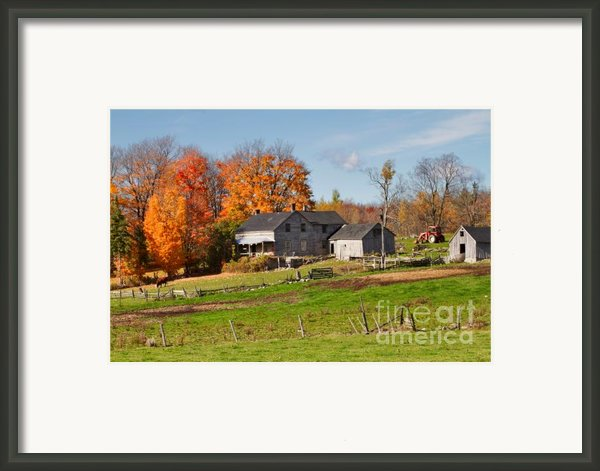 The Old Farm In Autumn Framed Print By Louise Heusinkveld