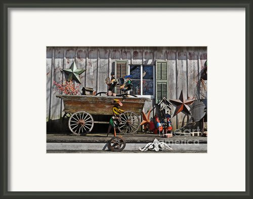 The Old Shed Framed Print By Mary Machare
