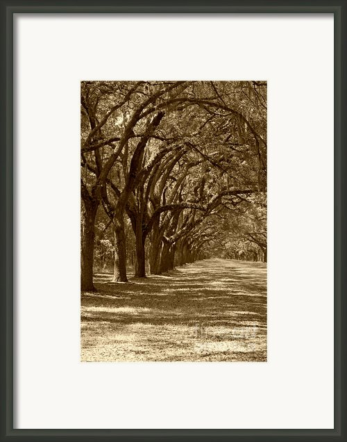 The Old South Series In Sepia Framed Print By Suzanne Gaff