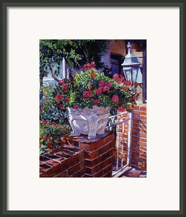 The Ornamental Floral Gate Framed Print By David Lloyd Glover