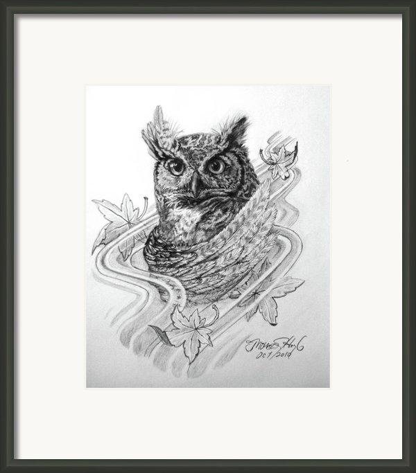 The Owl Framed Print By Thomas Hoyle