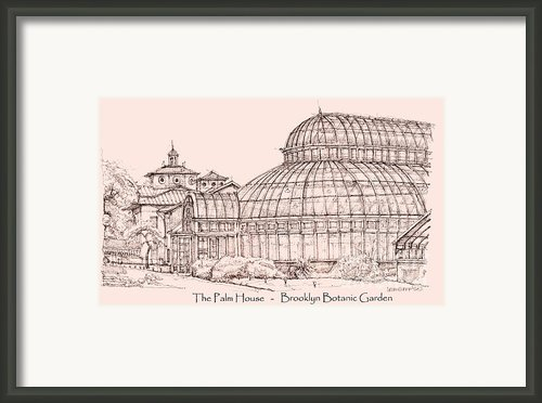 The Palm House In Pink Framed Print By Lee-ann Adendorff