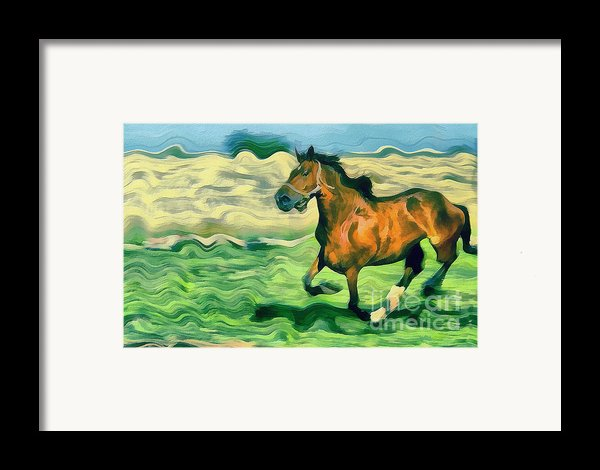 The Running Horse Framed Print By Odon Czintos